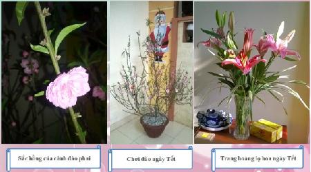 2-chuan-bi-1-1391954942_1392089192.jpg